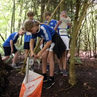 Orienteringsløb - en sport uden indvandrere